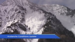 Update on avalanche conditions on B.C's south coast