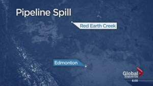 Alberta pipeline spills crude oil into muskeg