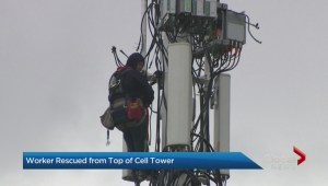Worker rescued from top of Toronto cell tower