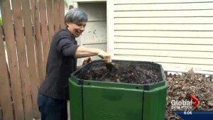 Saskatoon councillors ponder city-wide composting