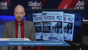 BIV: Vancouver's Goldcorp slashes its divident 60%