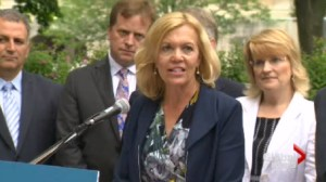 Christine Elliott running to replace Tim Hudak