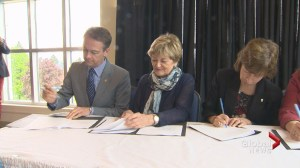 STU, NBCC join UNB's sexual assault strategy