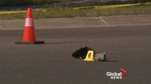 Neighbours want safety changes following Sherwood pedestrian crash