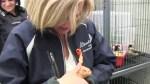 Fort McMurray hamsters get visit from Alberta Premier Rachel Notley