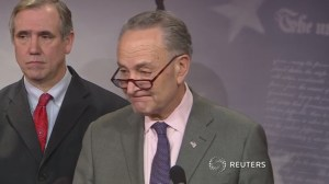 Reports of National Guard immigrant roundup 'despicable,' says Chuck Schumer