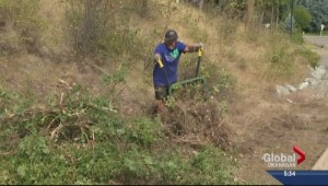 Gallagher's Canyon residents trade in golf clubs for rakes