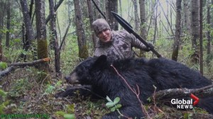 Hunting education group questions ethics of bear spearing