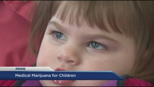 Grandparents hope medical marijuana oil will help 3-year-old