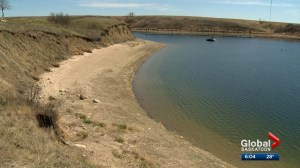 Provincial groups working to keep zebra and quagga mussels out of Saskatchewan