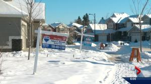 January slump for Edmonton real estate