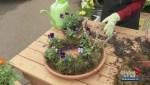 Gardenworks: Spring moss wreath