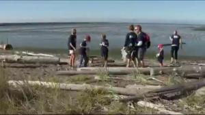 Great Canadian Shoreline Cleanup aims to reduce beach litter