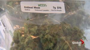 Challenges of legalizing marijuana