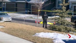 Fatal shooting in Auburn Bay