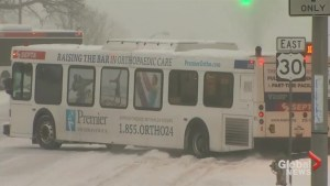 Snowstorm makes for messy commute in northeast US