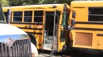 Two school buses crash into each other
