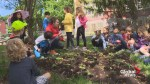 Roslyn Elementary grows community garden