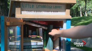 Little Lethbridge Libraries popping up across the city