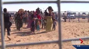 Edmonton's role in refugee resettlement