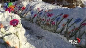 Keeping the spring spirit in snowstorm-slammed Atlantic Canada