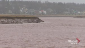 Body recovered from Petitcodiac River