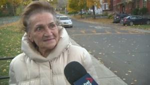 Voting underway in Quebec school board elections