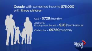 How 2017 will affect budgets of Alberta families