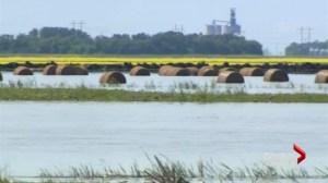 Manitoba Flood: Portage la Prairie waits