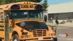 6-year-old Aurora, Ont. girl disappears for almost 2 hours after being put on wrong school bus
