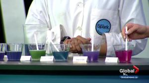 Get Sparked: Talking science with a PH