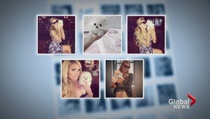 Calgary breeder's tiny dogs in high demand after Paris Hilton purchase
