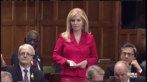 MP Adams questions shot down by Conservatives after jumping ship