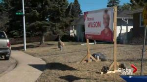 Alberta election campaigning and costs