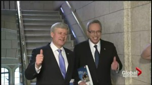 Former PM Stephen Harper poised to leave politics