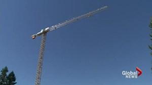 Crane Climbers