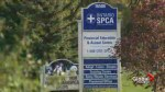 Premier's mandate letter to minister doesn't specifically address review of OSPCA