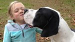 Great Dane helps 11-year-old with genetic disorder walk
