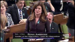 Rona Ambrose needles Justin Trudeau for 'doing pushups' while his finance minister was doing 'mental gymnastics'