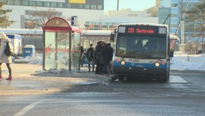 STM to lower student age restriction?
