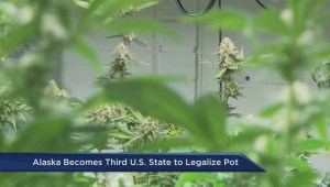 Alaska legalizes pot