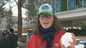 Campus-wide snowball fight at UBC attracts hundreds of students