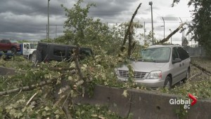 Destructive Wind Storm hits southern BC
