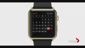 Initial Apple Watch sales limited to the web
