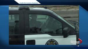 Social media reacts to picture of police officer on phone behind the wheel