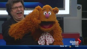 The Muppets on The Morning News