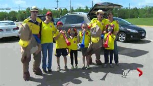 Organizers say FIFA World Cup was a success in Moncton