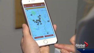 Dog walking app inspired by Uber comes to Calgary