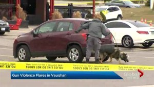 Rash of gun violence in Vaughan