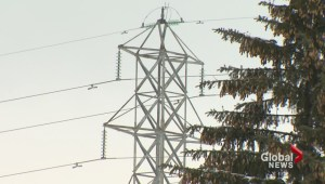 Leitao offers no reassurance over Hydro lines